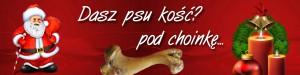 """""""Psia Kość"""" dla krakowskiego schroniska"""